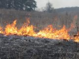 ЛОДА буде штрафувати власників земельних ділянок, на яких знайдуть сліди підпалу трави