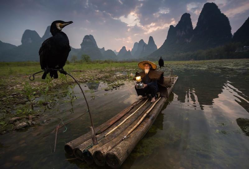 5. Гуйлінь, Китай Рибак з бакланами на заході.
