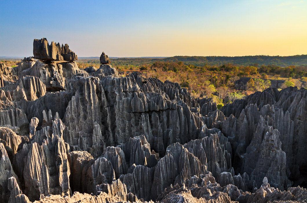 Кам'яний ліс на Мадагаскарі