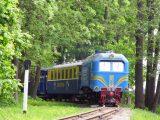 Юні залізничники Львівської магістралі запрошують гостей на відкриття сезону дитячих залізниць