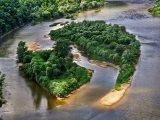 Топ-10 найдивовижніших творінь природи на території України