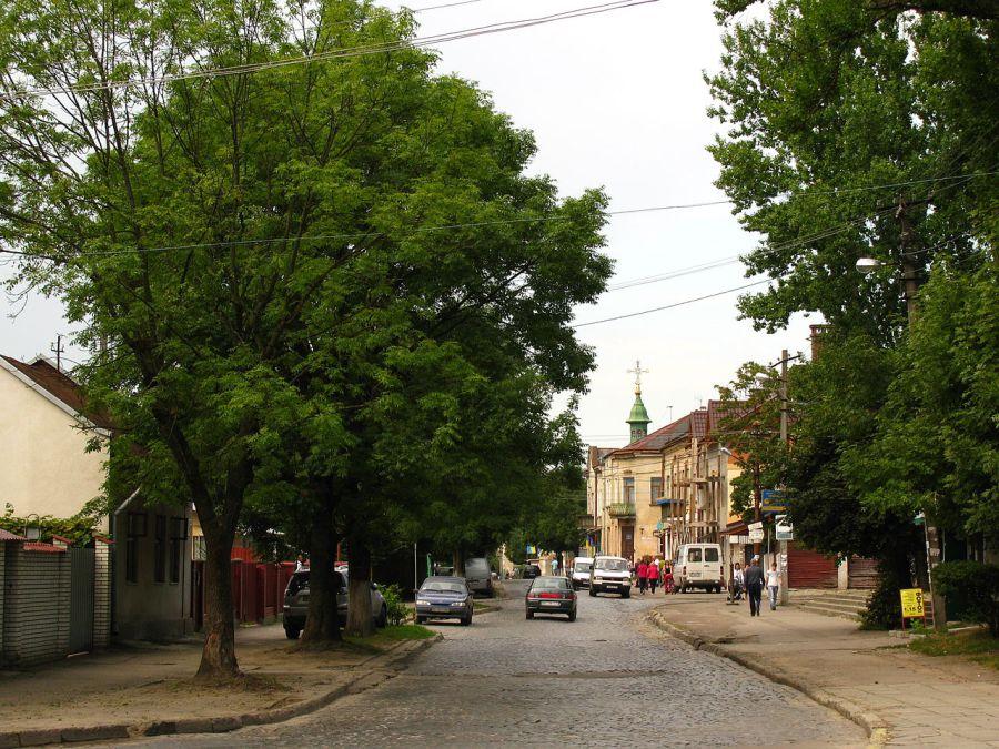Вулиця Повітряна на Левандівці – одна із найдавніших вулиць сучасної Левандівки