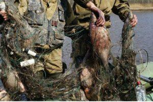 На Львівщині спіймали двох братів, які крали рибу