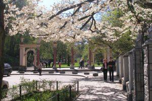 У Львові збирають ідеї оновлення Стрийського парку
