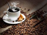100 Цікавих фактів про каву