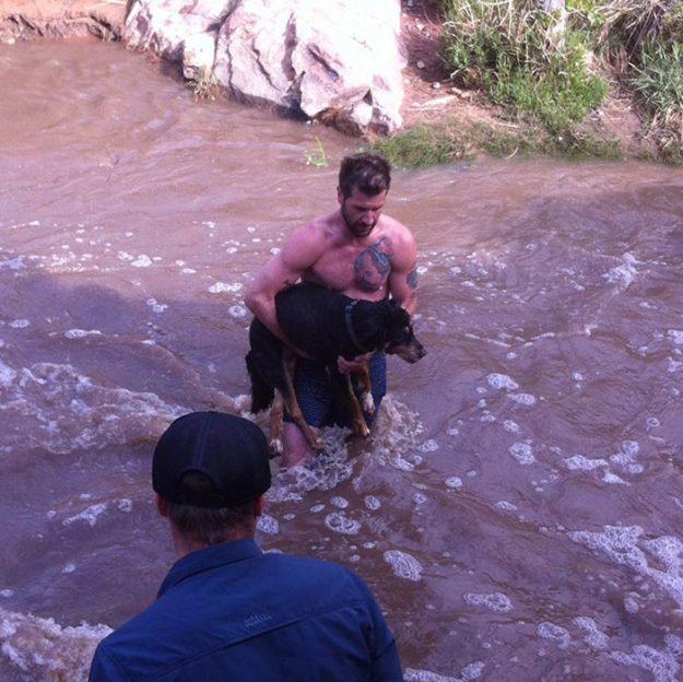 Просто чоловік, просто рятує собаку з річки