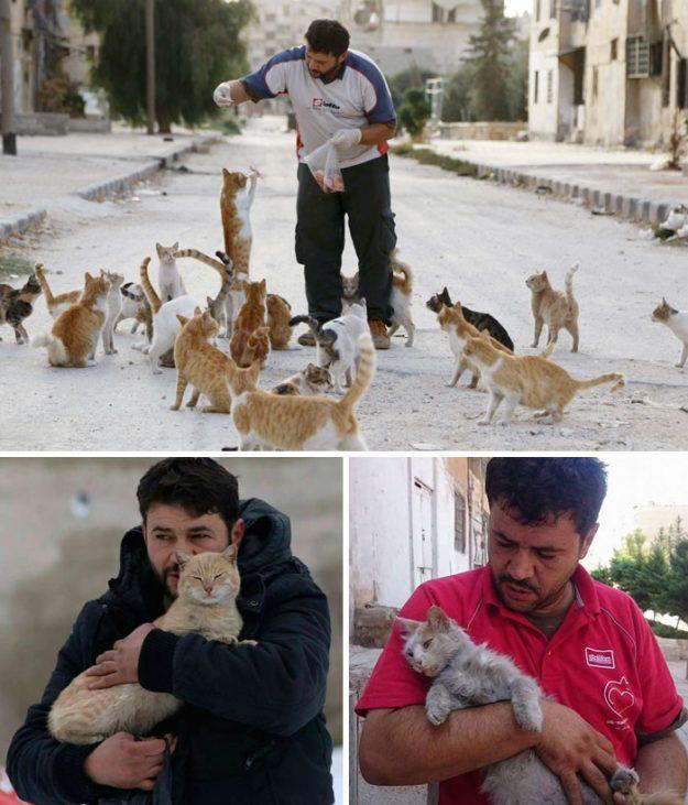 Сирійський чоловік, який підгодовує кішок в роздирається війною Алеппо