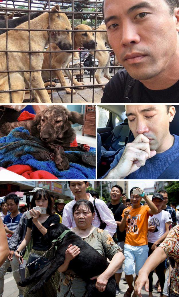 Цей чоловік відібрав у корейських торговців 1000 собак, щоб тих не з'їли. Потім йому помстилися, але песики будуть жити.