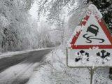 У Львові шукають водія-вбивцю