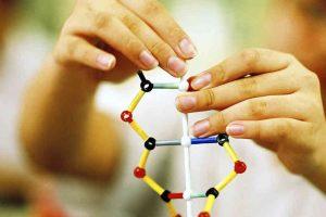 Діти успадковують розумові здібності тільки від матері, – вчені