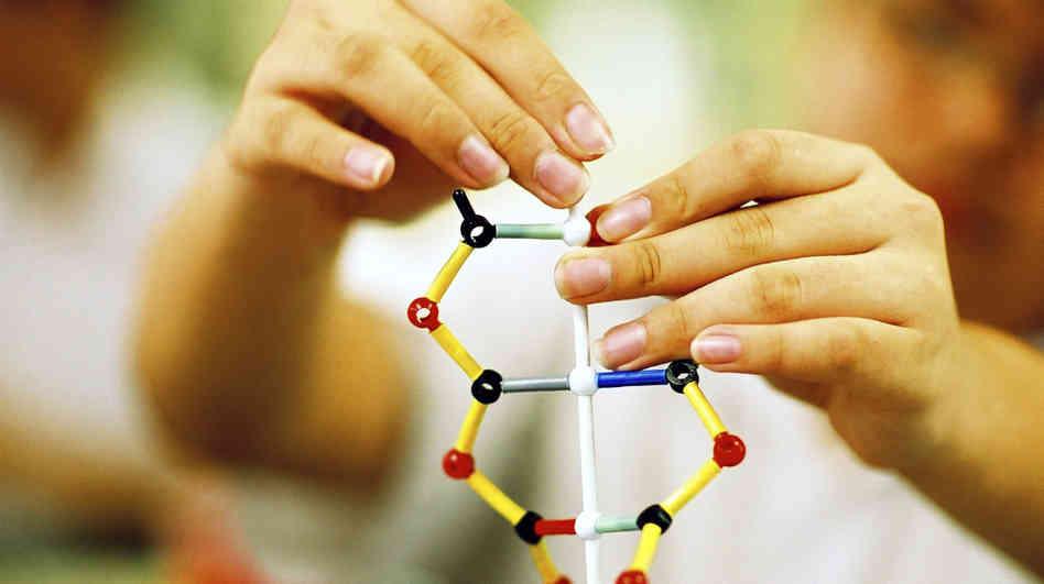 ген генетика спадковість
