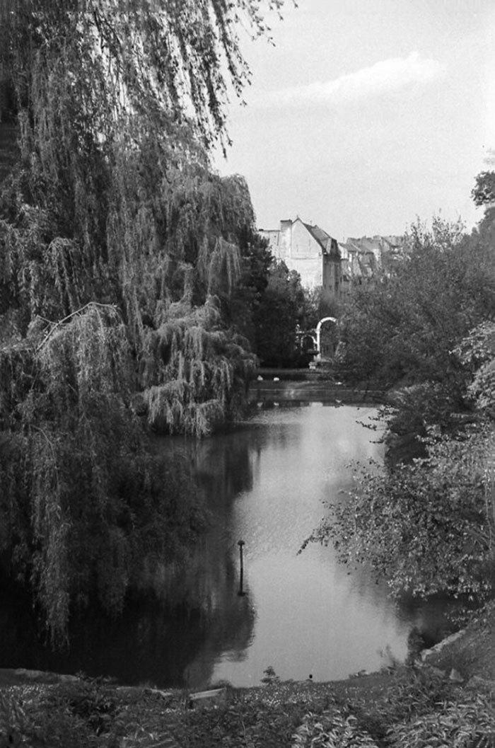 Львів, Стрийський парк, 1964 рік