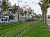 У Львові пропонують засіяти травою трамвайні колії