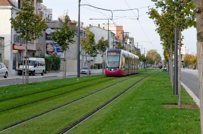 Трамвайні колії у місті пропонують засіяти травою.