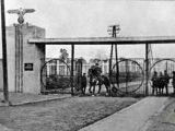 Янівський концтабір під Львовом або «Танго смерті»