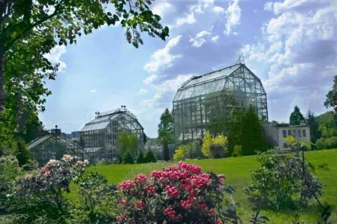 ботанічний сад ЛНУ ім. Івана франка