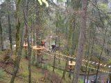 Уздовж закарпатського Синевиру тепер можна прогулятися екостежкою поміж кронами дерев