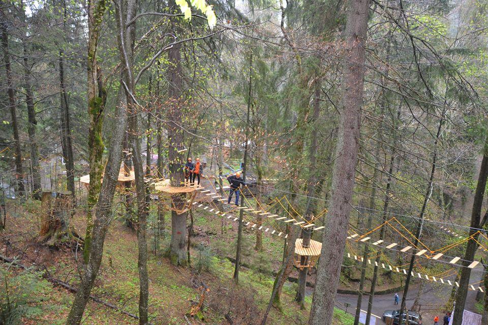 У Національному природному парку «Синевир» відкрили екостежку у кроні дерев.