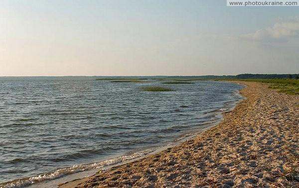 Краєвиди озера Пулемецьке