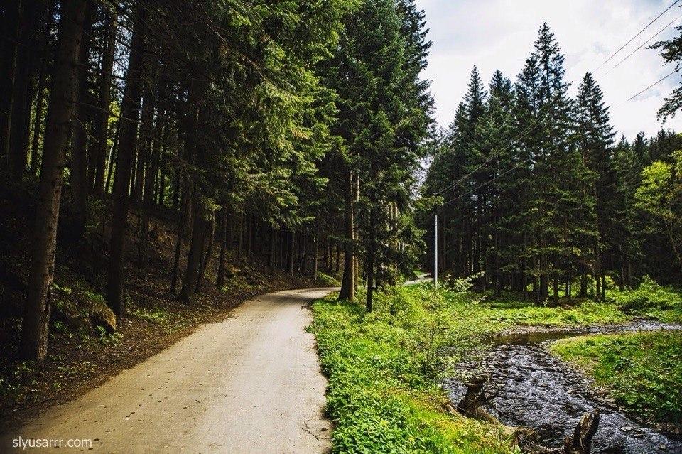 """Національний природний парк """"Сколівські Бескиди"""""""