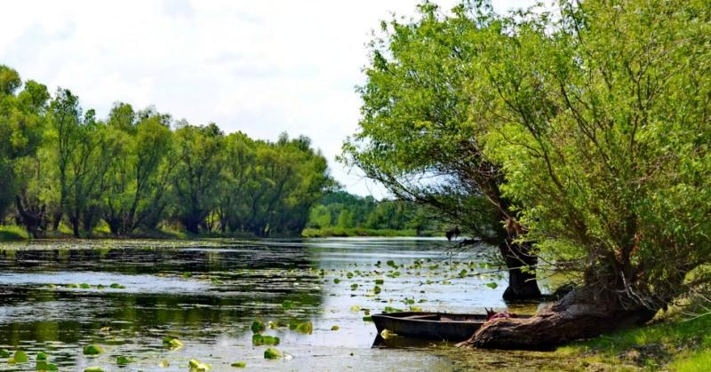 Озеро Ялпух Поблизу міста Болграда на Одещині