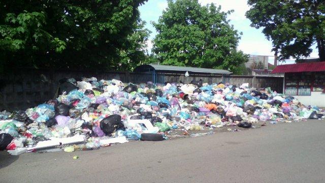 З деяких сміттєвих контейнерів у Львові сміття не вивозять уже місяць