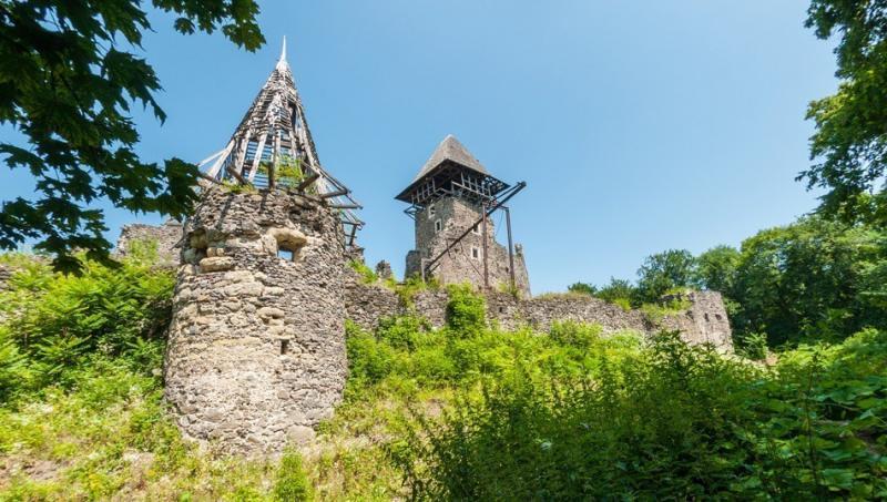Невицький замок