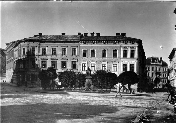 Пальми у Львові на сучасному проспекті Шевченка