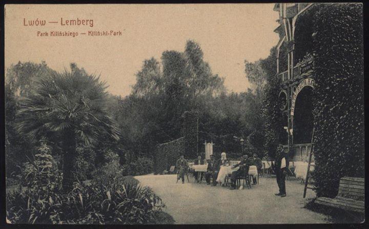 Пальми у сучасному Стрийському парку (колись парк Кілінського)