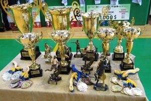 Літній чемпіонат Львова з міні-футболу: нагородження переможців та призерів