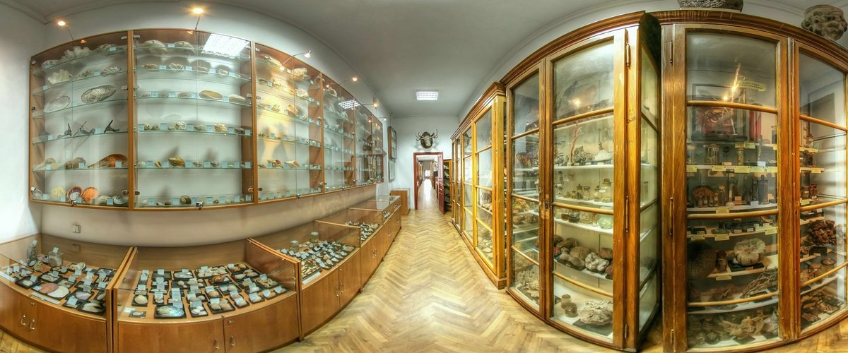Зоологічний музей імені Бенедикта Дибовського