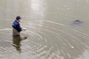 Стало відомо кому належить тіло, яке витягли сьогодні з водойми у Львові