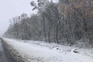 На сході України випав сніг (фото). У Львові перший сніг впаде через тиждень