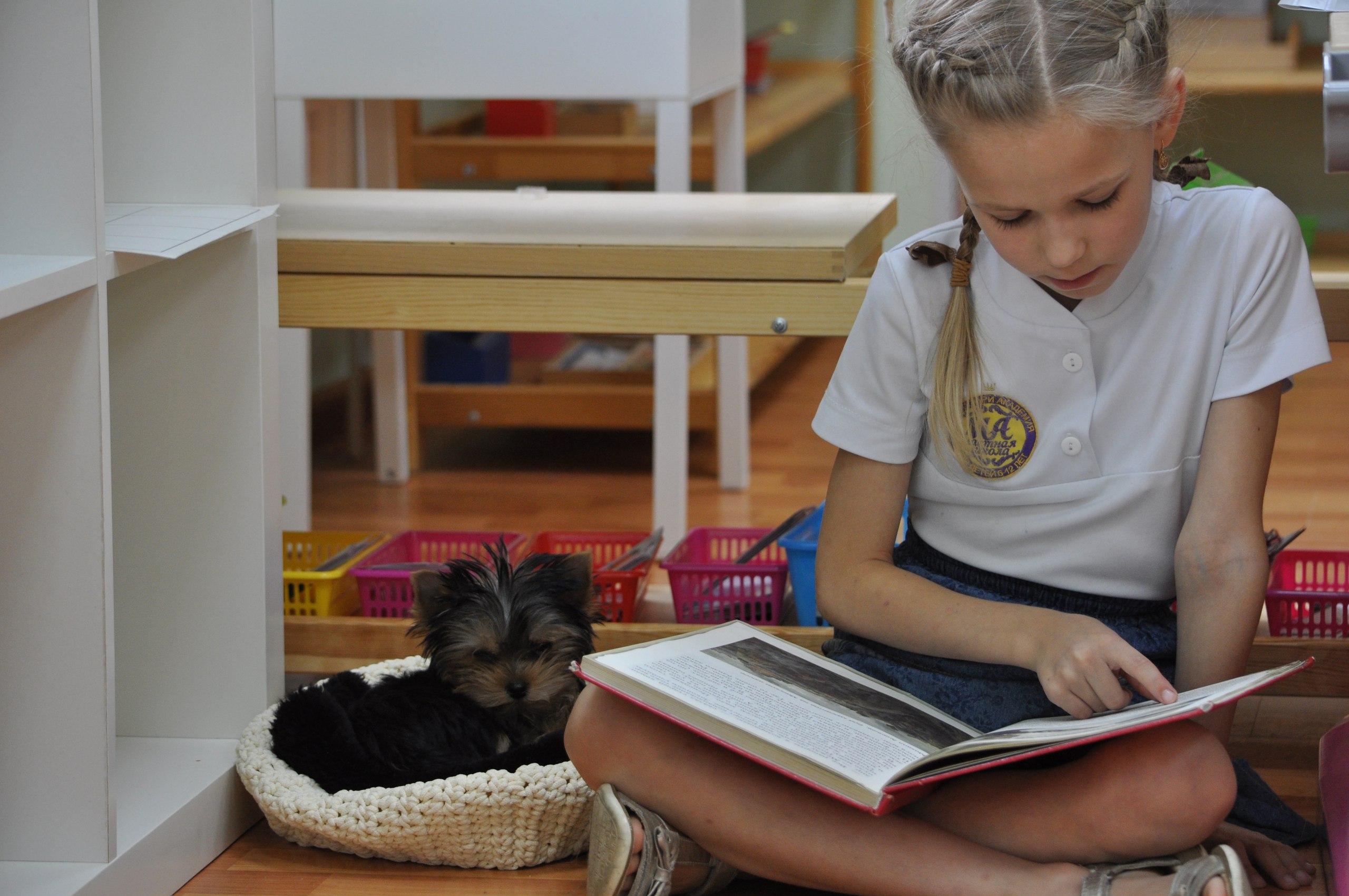 собака для читання фінляндія