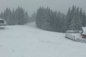 Карпати продовжує засипати лапатим снігом: відео з камер Буковелю та інших курортів