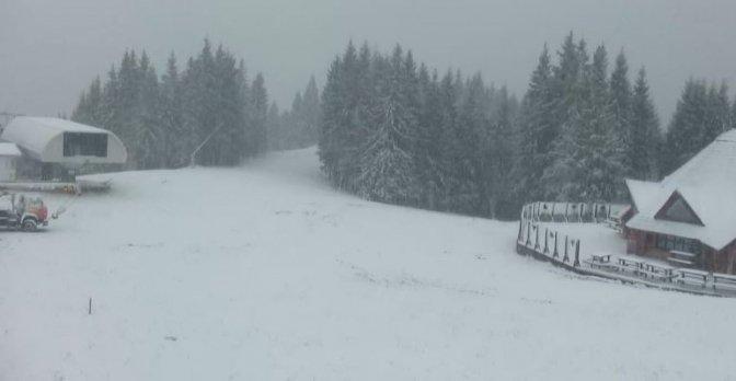 Карпати засипало першим снігом 3