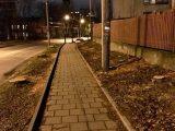 Задля новобудови та велодоріжки на вул. Зеленій у Львові зрізали півсотні дерев