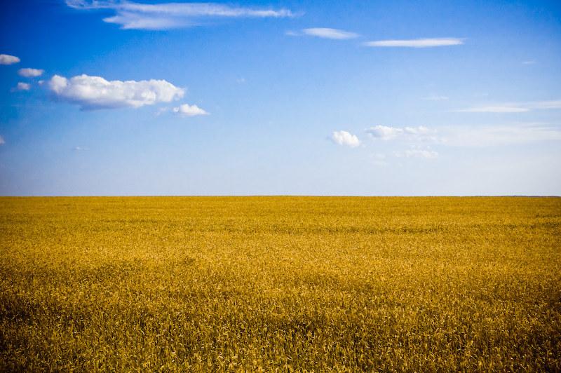Пейзажі мають такий вигляд, як ніби прапор України ожив.