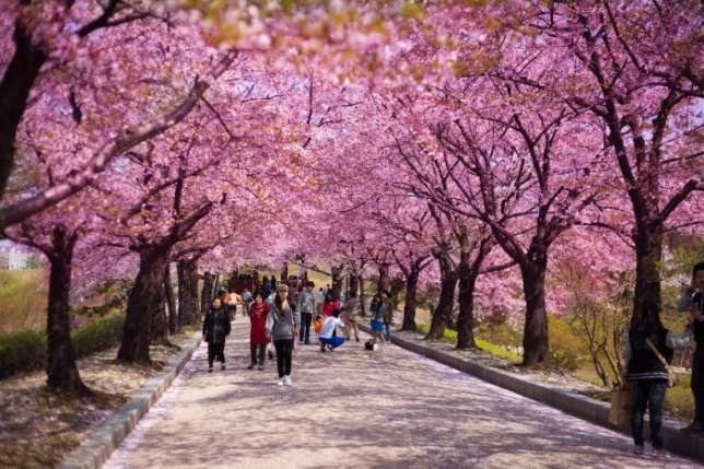 Атамі, Японія