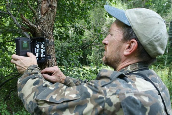 фотопастки біля Чорнобиля