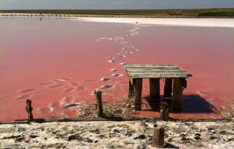 На фото: Рожеве озеро, Херсонська область