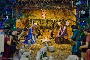 Різдвяні шопки у храмах Львова (фото)