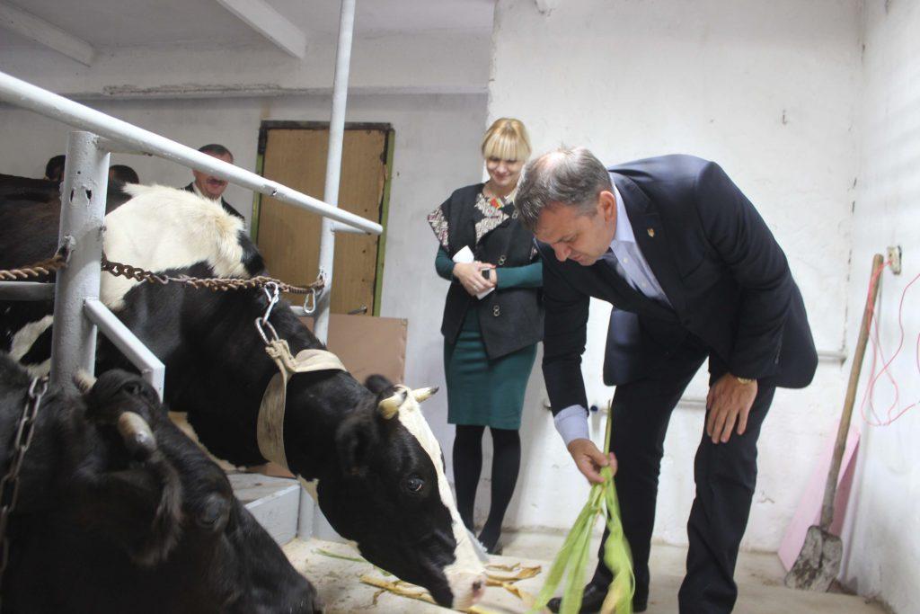 У вересні 2016 року на Жовківщині відкрили сімейну міні-ферму, де утримують коней, свиней та корів. Під час відкриття ферми Олег Синютка не відмовив собі у задоволенні погодувати корів (вгорі) і погладити коней (внизу)