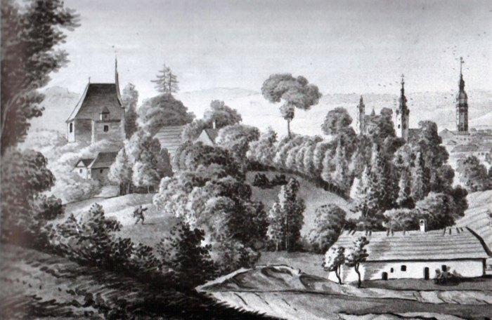 Фрагмент панорами Львова зі сторони Софіївки 20-ті роки ХІХ ст. (E. Dzieduszycka)