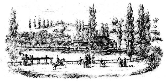 Пелчинський став (1850 р.)