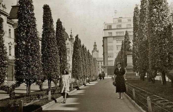 Нин. проспект Шевченка. Фото до 1939 року