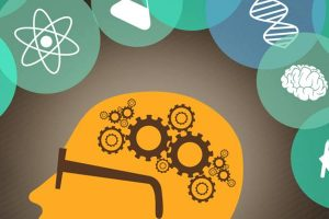 50 способів покращити роботу мозку