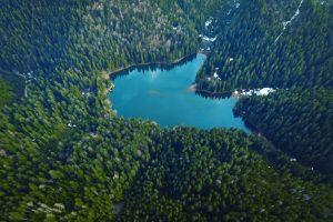 Дорогою на Синевир: У мережі з'явилося вражаюче відео Карпат, зняте в околицях відомого озера