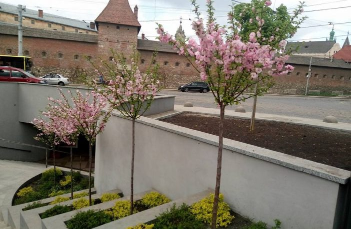 На площі Митній висадили квіти (Фото)