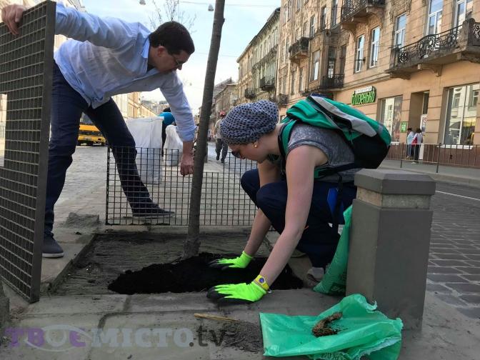 Як львів'яни рятували дерева від піскосуміші. Фоторепортаж